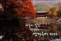 stylish landscape / stylishly landscape of republic of korea