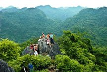 Vietnamese National Park / This board contains the major national park images that should  be toured while one visit to Vietnam... find more here: http://tuanlinhtravel.com/Vietnam/newsdaily/6/Vietnam-Travel-News.htm
