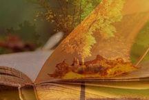 Lezen seizoenen