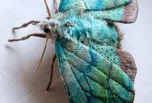insectos de tela