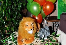 1yaş safari