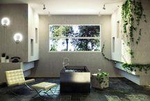 Spaces: Wood in Bathrooms