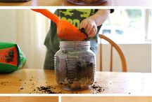Projects to do with Kids / Here are a few project ideas that are perfect to try with your kids.