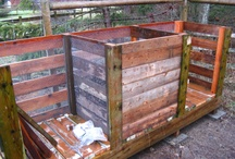 Composting / by Jackie Martin