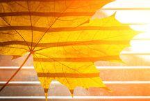 Wetter Türkei / Informationen über die Türkei Wetter.  http://www.turkeiurlaubhotels.com/wetter-tuerkei/