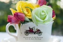 """Teas with Roses - A Daddy's Pictures Children's Book / Join a young girl and her friends for a tea party in a beautiful garden and you will learn the language of flowers.  """"With his camera, like magic it seems Daddy shoots pictures that capture my dreams."""""""