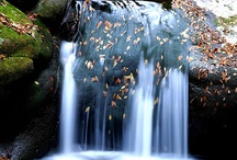 Waterfalls / by Carmen Suarez-Garcia