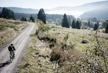 Gravel, Cross und aus dem Wald