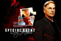 NCIS / CBS's NCIS <3 Follow the rules and you should be fine. Also name your Goldfish Kate.