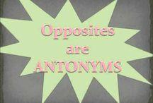 Grammar - Synonym & Antonym