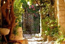 Beautiful Spaces and Places / by Nancy Gorla