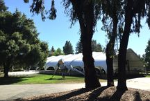 Stanford Commencement / Congratulations Class of '15!