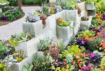 Gardening / by Katie Crosby