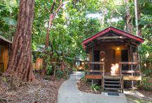 Sleeping in the Daintree Rainforest at Cape Trib Beach House