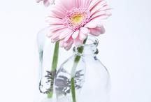 Arranjos Florais / Decoraçao de jarras