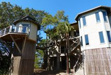 Dewees Island Homes for Sale