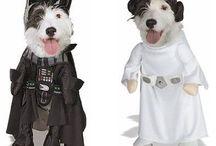 disfraces perro