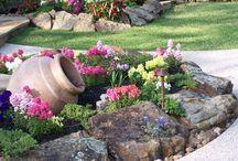 λουλούδια κηπος