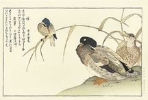 japanese woodblock prints collection