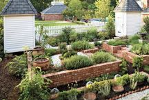 Mom's Herb Garden