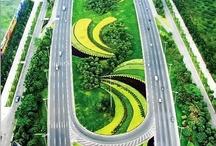 Infrastructure | Landscape