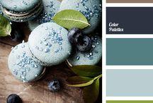 Color palette / Color palette