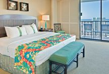 Guest Rooms & Views