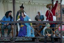 Turnieje rycerskie i wydarzenia historyczne na zamku w Czersku / Ciągle żywa historia na czerskim zamku. Odwiedź nas koniecznie!