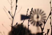 Windpompe & John Deere