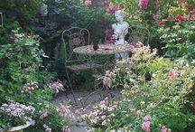 Gartenbeet an der Hecke