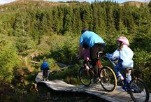 Things to do in the area / There is so much to do when staying at The Airds and here is just a taster!