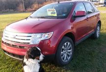 Used 2008 Ford Edge for Sale ($9,200) at Kingsley , PA / Make:  Ford, Model:  Edge, Year:  2008, Exterior Color: Red, Interior Color: Charcoal, Doors: Four Door, Vehicle Condition: Excellent,Mileage:65,000 mi, Fuel: Gasoline, Engine:6Cylinder, Transmission: Automatic.   Contact:570-280-5095