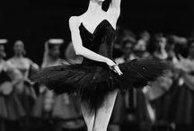 Danse Body Beauty
