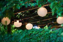 Dream Garden / Garden Spaces