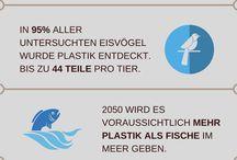 Artikel & Infos zu Umweltschutz