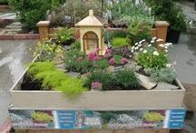 Perennials & Displays
