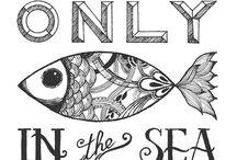 Sea design shop