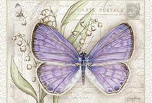 Motyle i ptaki