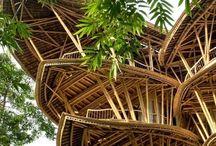 Bamboe Buildings