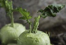 photos legumes