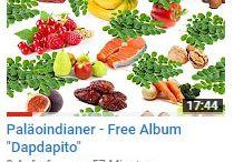 YouTube Videos über Dapdapito und Paläoindianer
