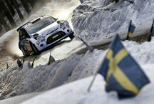 WRC Promoter names nine initial rallies for 2016 calendar / The nine nominated rounds are: Monte-Carlo (21 - 24 January), Sweden (12 - 14 February), and with dates still to be confirmed, Argentina, Australia, Finland, Italy, Mexico, Poland and Spain.