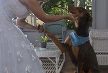 Mascota y novia