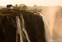 Oh how I love Africa! <3