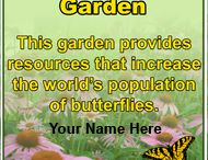 North American Butterfly Association - NABA / Information on and from the North American Butterfly Association, a non-profit organization dedicated to the promotion of public enjoyment and conservation of butterflies.