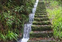 voda na zahradě