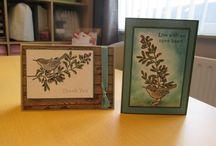 Mijn kaarten van SU / Dit zijn kaarten die ik gemaakt heb met de spullen van Stampin'up!