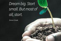 Start to grow