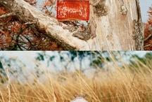 Packaging we love / by weareyourstudio
