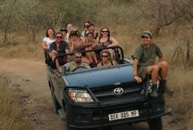Mount Zion Tours Blog (Mount Zion Tours and Travels Blog) / Travel Tips Blog